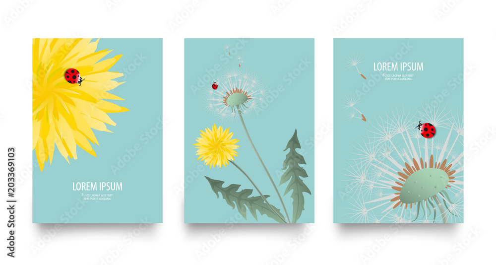 Fototapety, obrazy: Floral vector set of posters, cards with dandelion. Vintage retro templates for flyers, invitation design. Spring or summer bright background with yellow flower, seed head and cute ladybug on blue
