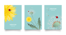 Floral Vector Set Of Posters, ...