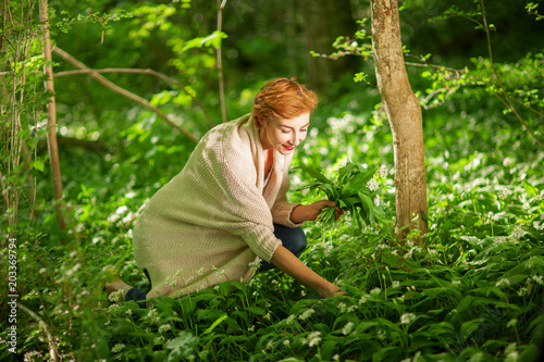 Photo Beautiful woman picking wild garlic in the forest, fresh green forest colors