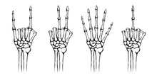 Hands Of The Skeleton With Dif...