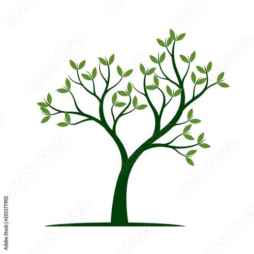 Zielone drzewo wiosną. Ilustracja wektorowa.