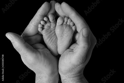 Fotografie, Obraz  Piedi di un neonato tra le mani del padre