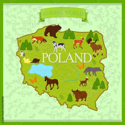 Fototapety Polska map-of-animals-in-poland