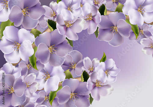 Fototapety na wymiar   violet-flowers-background-vector-realistic-spring-floral-background-3d-illustrations