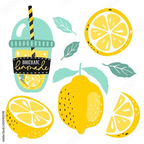 Fotografie, Obraz  Hand drawn lemon, lemon slice, lemonade, leaves and handwritten text