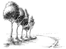 Trees Alley In The Park Sketched Wallpaper
