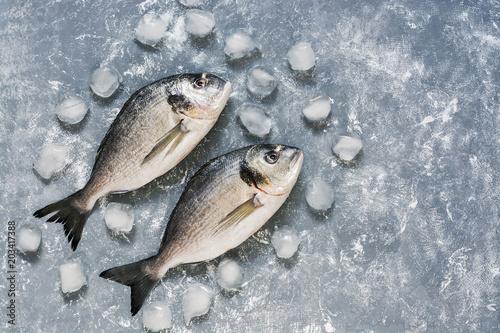 Fotografie, Obraz  Fresh dorado fish on a gray background with ice cubes