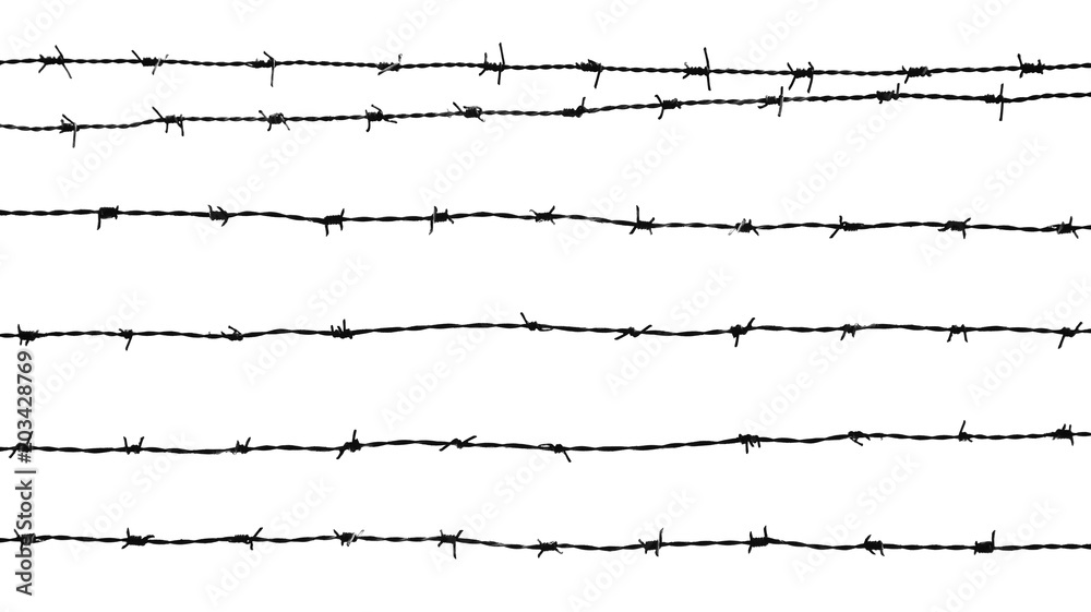 Fotografía  silhouette of a barbed wire isolated on white background