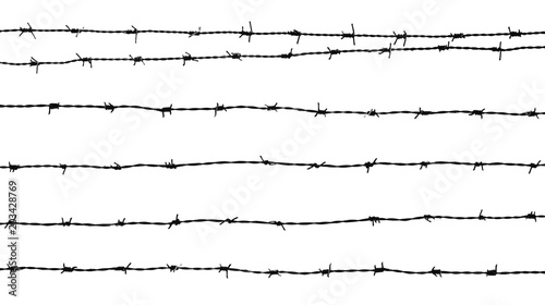 Pinturas sobre lienzo  silhouette of a barbed wire isolated on white background