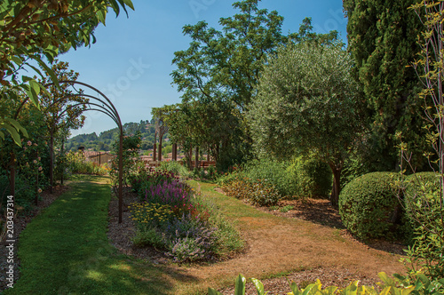 Photo View of pleasant garden in the morning sun with blue sky, in the calm and charming village of Figanieres