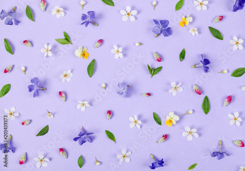 Foto op Canvas Bloemen Floral pattern made of spring white and violet flowers, green leaves and pink buds on pastel lilac background. Flat lay. Top view.