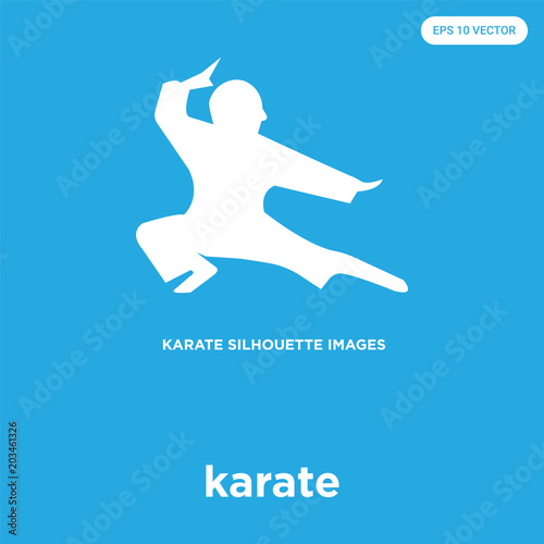 Karate Icon Isolated On Blue Background Buy This Stock Vector And