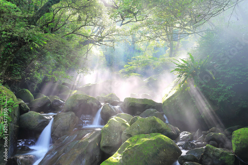 Fototapeta Beautiful waterfalls and sunbeams in jungle ~ Refreshing cascades in a mysteriou