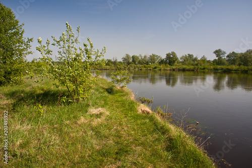 Staande foto Rivier Rzeka Bug