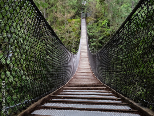 Lynn Canyon Suspension Bridge in Lynn Valley Provincial Park фототапет