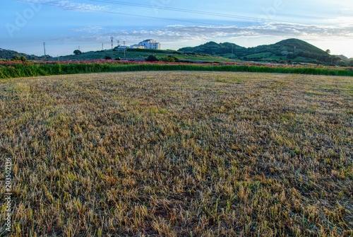 In de dag Grijs mercadal countryside, menorca, balearic islands, spain