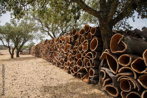 Photo korkeichenrinden zur Verarbeitung in Portugal auf einem Lagerplatz