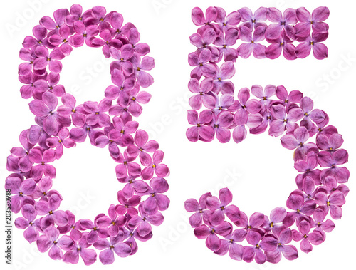 Fotografia  Arabic numeral 85, eighty five, from flowers of lilac, isolated on white backgro