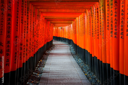 Poster Tokyo Senbon Torii at Fushimi Inari Shrine.