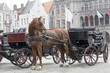 Traditional Horse and Cart, Brugge Belgium