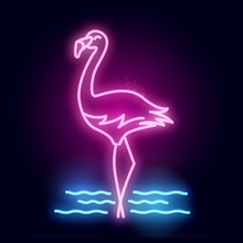 A Glowing Neon Tube Pink Flami...