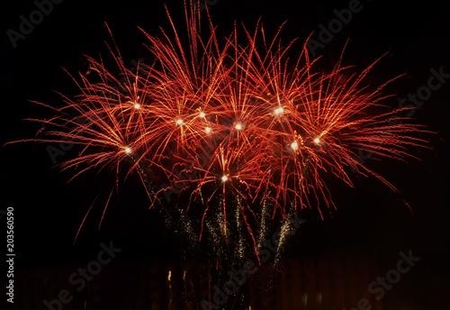 Fotografie, Obraz  Fuochi d'artificio rossi