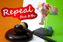 Repeal The Eighth Amendment Of...