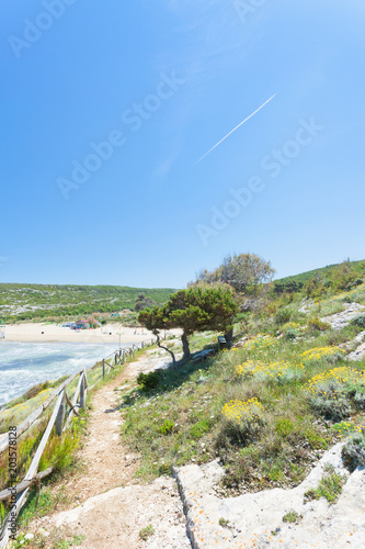 Foto op Canvas Blauwe hemel Lido Cala Lunga, Apulia - Beautiful landscape around the beach of Cala Lunga