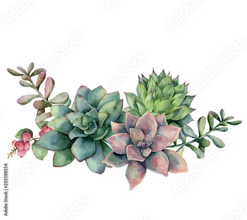 Stampa su Tela  Watercolor succulent bouquet with berries