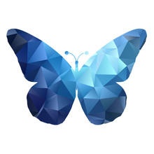 Low Poly Butterfly Design 0105