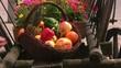 Fruits put