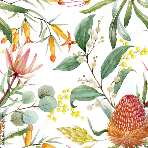obraz PCV Watercolor australian banksia vector pattern