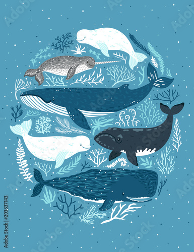 Fotografie, Tablou  Vector set of whales