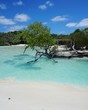 Strand mit Mangroven auf Cayo Coco, Jardines Del Rey, Kuba