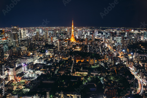 Tokyo skyline and buildings from above, view of the Tokyo tower Canvas Print