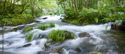 Printed kitchen splashbacks River Mountain river in Galicia, Spain
