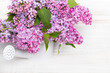 Lilac flowers on white wooden background, copy space,
