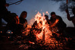 canvas print picture - Young and cheerful friends sitting and fry marshmallows near bonfire at night