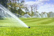 Watering A Green Grass Against...