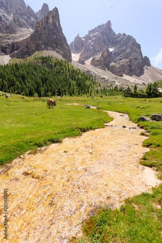Tuinposter Alpen Mountain peaks view, dolomites landscape