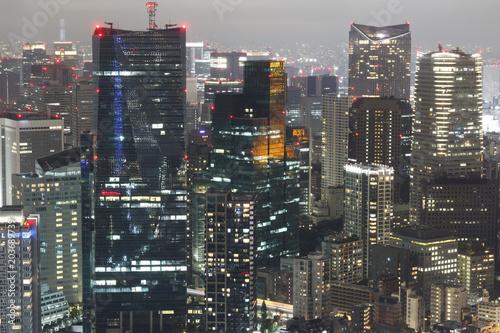 Tuinposter Tokyo Tokyo skyline at night