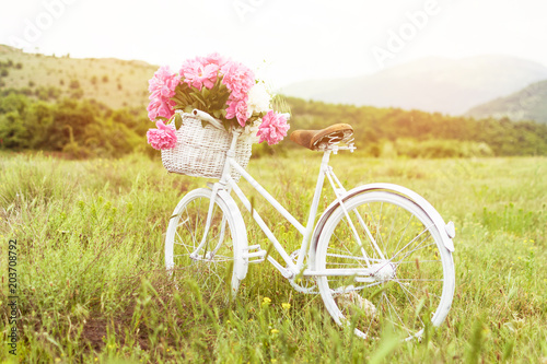 Poster Velo Beautiful white vintage bicycle with basket full of pink peonies outdoors in nature on sunny spring day