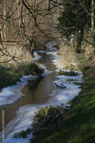 Fotografie, Obraz  kleiner, natürlicher Bachlauf im Winter