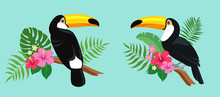 Cute Toucan Birds Sitting On A Tropical Branch With Exotic Leaves And Flowers Of Hibiscus And Plumeria. Bright Colorful Vector Illustration In Cartoon Style