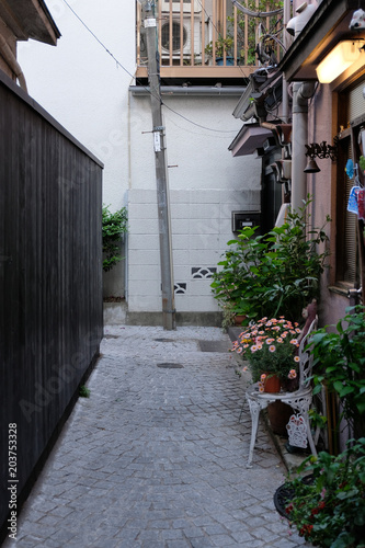 Fotografie, Obraz  東京 神楽坂