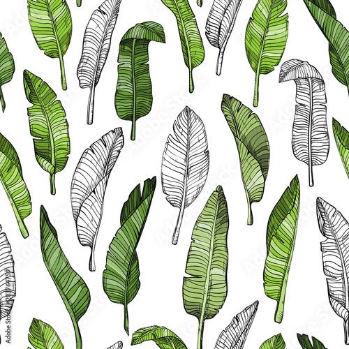 wzor-w-zielone-tropikalne-liscie-na-bialym-tle
