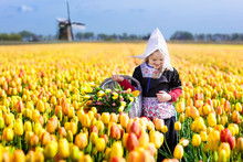 Child In Tulip Flower Field. Windmill In Holland.