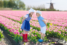 Kids In Tulip Flower Field. Wi...