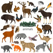 Forest animals color flat icons set