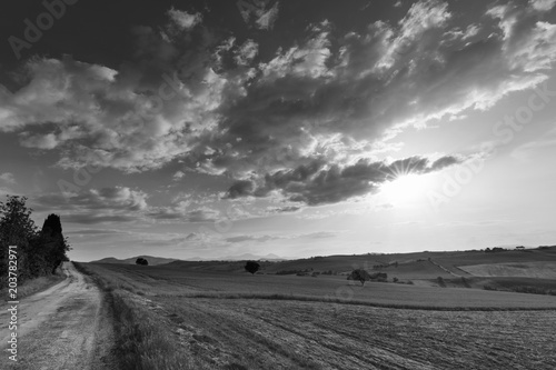 Foto op Aluminium Grijs Black and white landscape, road and fields at sunset, cloudy sky